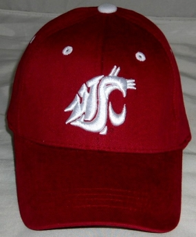 Washington State Cougars Youth Team Color One Fit Hat