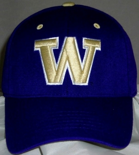 Washington Huskies Team Color One Fit Hat