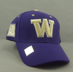 Washington Huskies Adjustable Hat