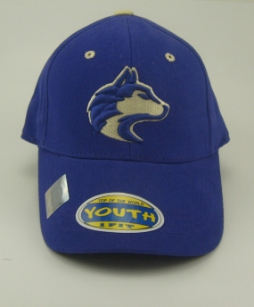 Washington Huskies Youth Team Color One Fit Hat
