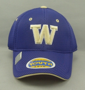Washington Huskies Youth Elite One Fit Hat