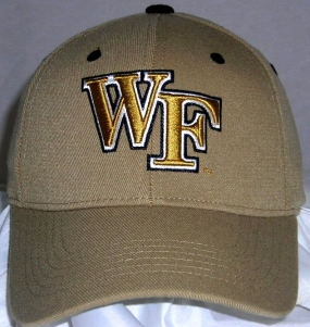 Wake Forest Demon Deacons Team Color One Fit Hat