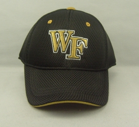 Wake Forest Demon Deacons Youth Elite One Fit Hat