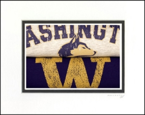 Washington Huskies Vintage T-Shirt Sports Art