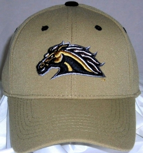 Western Michigan Broncos Team Color One Fit Hat