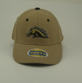 Western Michigan Broncos Youth Team Color One Fit Hat