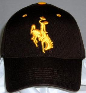 Wyoming Cowboys Team Color One Fit Hat