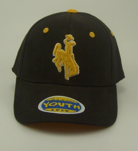 Wyoming Cowboys Youth Team Color One Fit Hat
