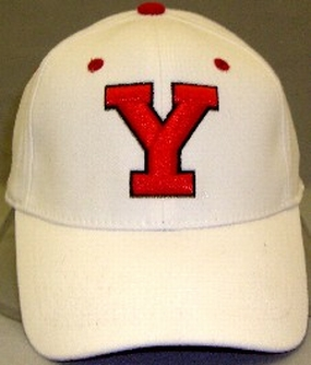 Youngstown State Penguins White One Fit Hat