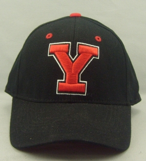 Youngstown State Penguins Black One Fit Hat