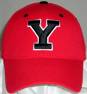 Youngstown State Penguins Team Color One Fit Hat