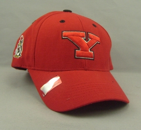 Youngstown State Penguins Adjustable Hat