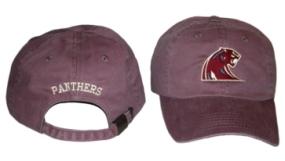 Michigan Panthers Adjustable Hat