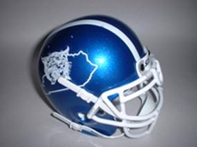 2004 Kentucky Wildcats Throwback Mini Helmet