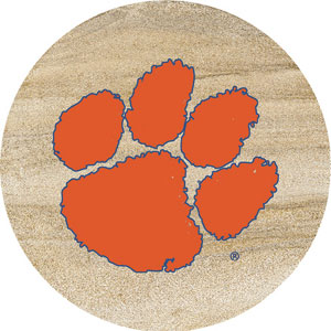 Thirstystone Clemson Tigers Collegiate Coasters