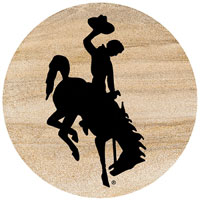 Thirstystone Wyoming Cowboys Collegiate Coasters