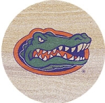 Thirstystone Florida Gators Collegiate Coasters